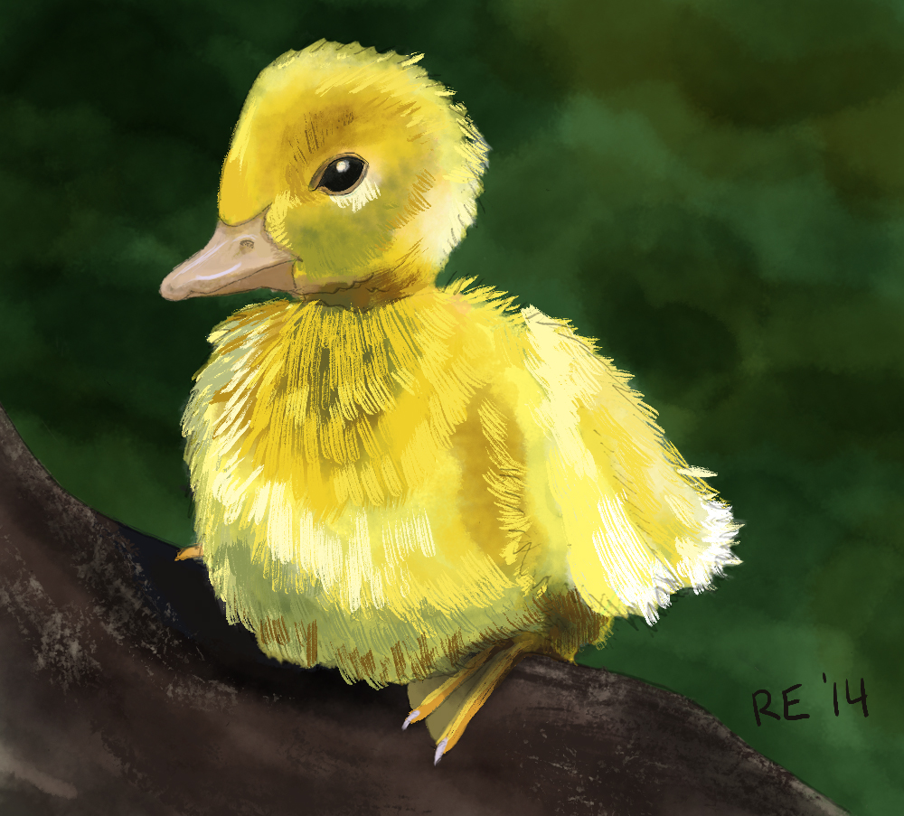 Ruthie Edwards duckling painting