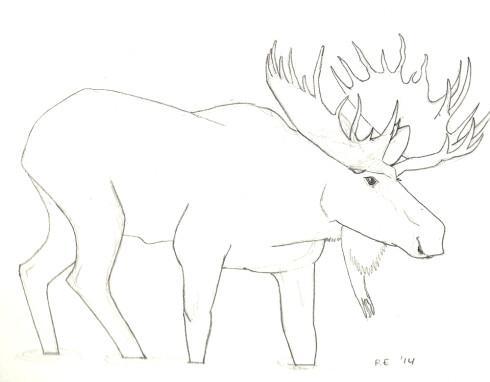 0910_moose_sm