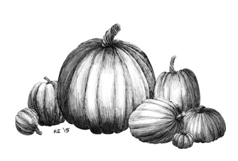 1007_pumpkins_sm