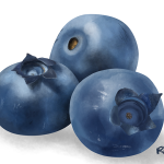 0111_blueberries_sm
