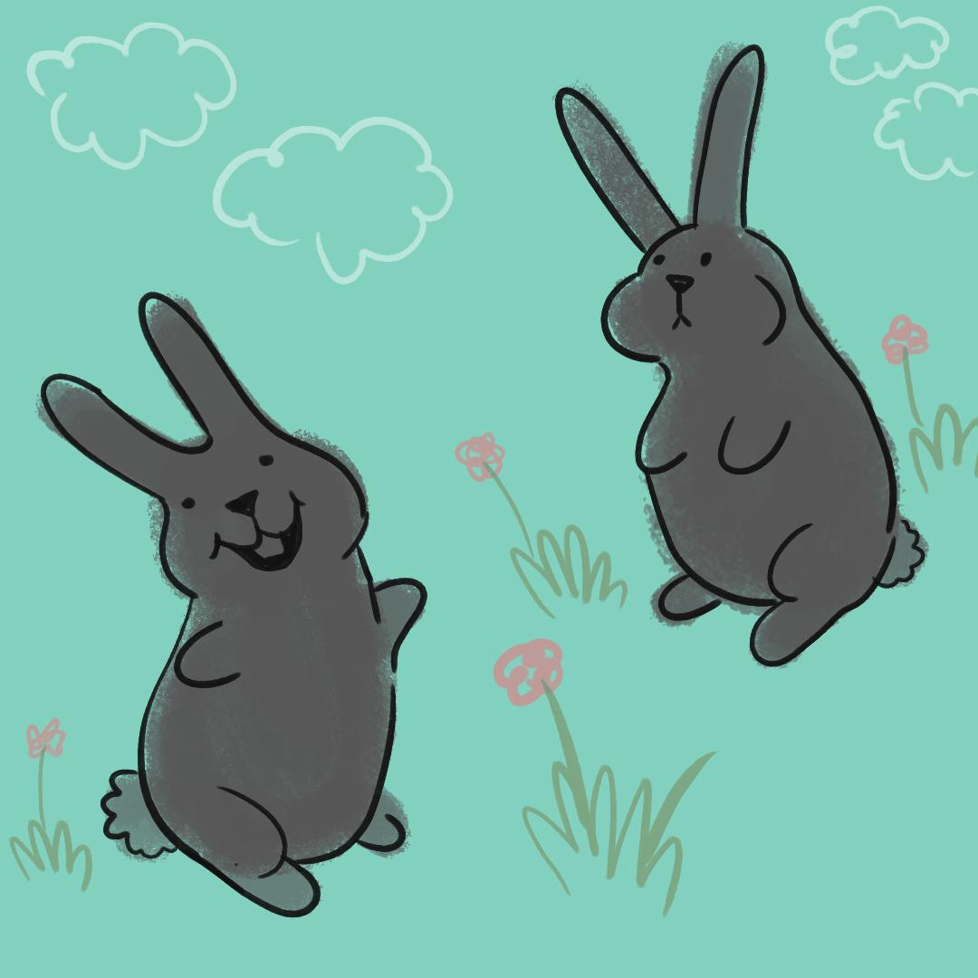 0519_rabbits